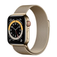 Apple Watch Series 6 40mm (M06W3) GPS + Cellular Gold Stainless Steel Case with Gold Milanese Loop