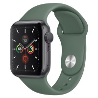 Apple Watch Series 5 44mm GPS Gray Aluminum Case with Pine Green Sport Band