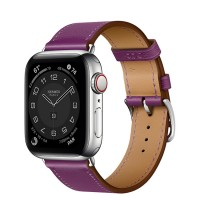 Apple Watch Series 6 Hermès 40mm Silver Stainless Steel Case with Anémone Single Tour