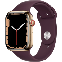 Apple Watch Series 7 41mm (MKHG3) GPS + Cellular Gold Stainless Steel Case with Dark Cherry Sport Band