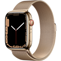 Apple Watch Series 7 41mm (MKHH3) GPS + Cellular Gold Stainless Steel Case with Gold Milanese Loop