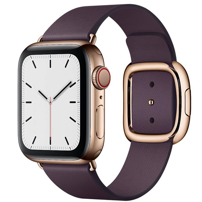 Apple Watch Series 5 40mm (MWPW2) GPS + Cellular Gold Stainless Steel Case with Aubergine Modern Buckle